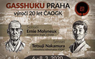20 let IOGKF v České Republice